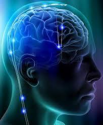 Mente-Cerebro-Cuerpo